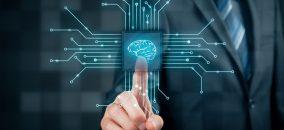 network intelligence