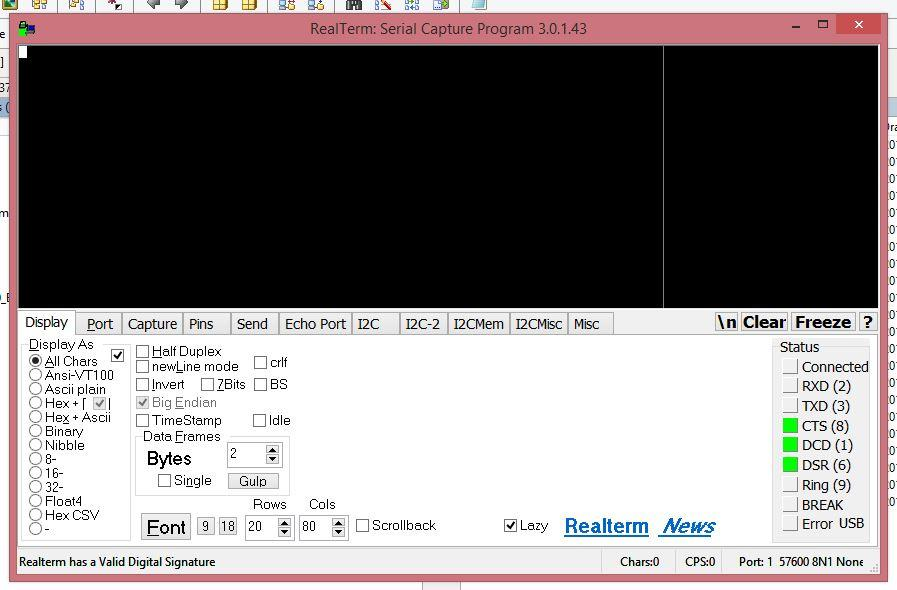 RealTerm: Serial/TCP Terminal / Bugs / #91 DISPLAY value error