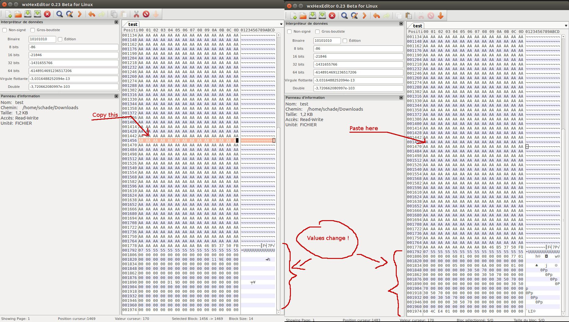 wxHexEditor / Bugs / #101 Using clipboard corrupt file and make